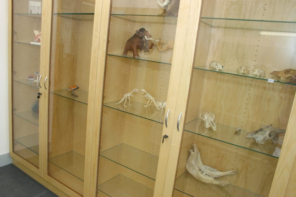 Habberley Learning Campus Display Cabinet